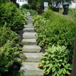 Colonial Steps 2