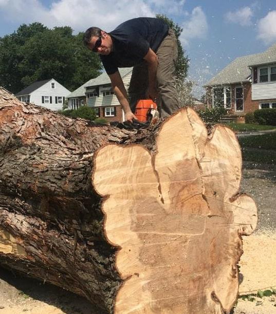 Stump Removal Crew